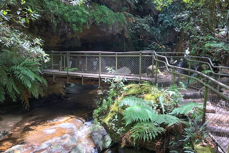 Walking path along Leura Falls Creek