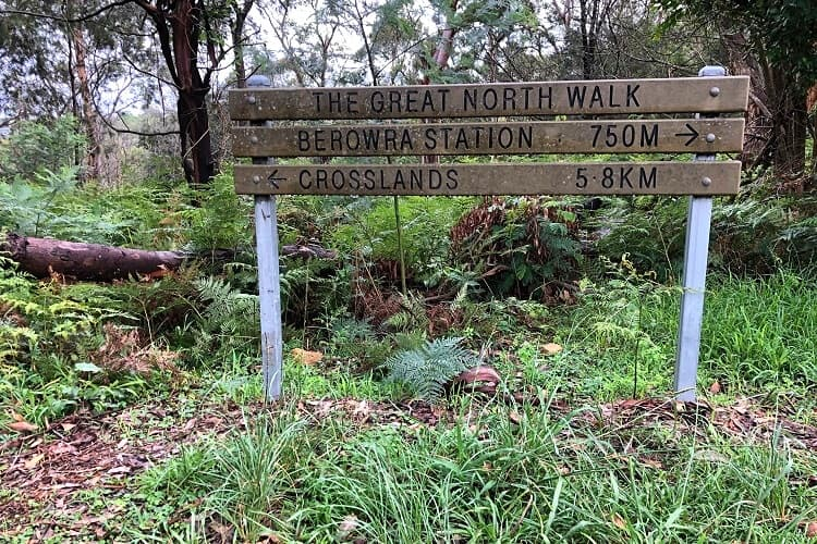 Track signpost at Crowley Road in Berowra