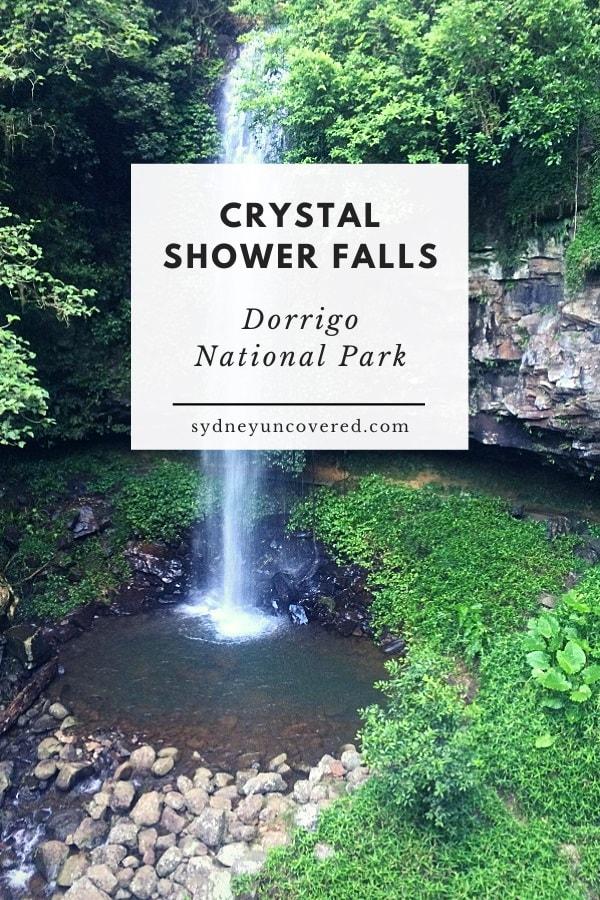 Crystal Shower Falls in Dorrigo National Park