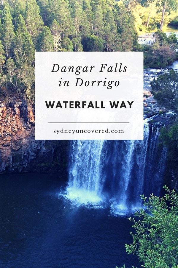 Dangar Falls in Dorrigo NSW