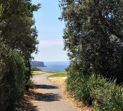 Walking path with views of North Head