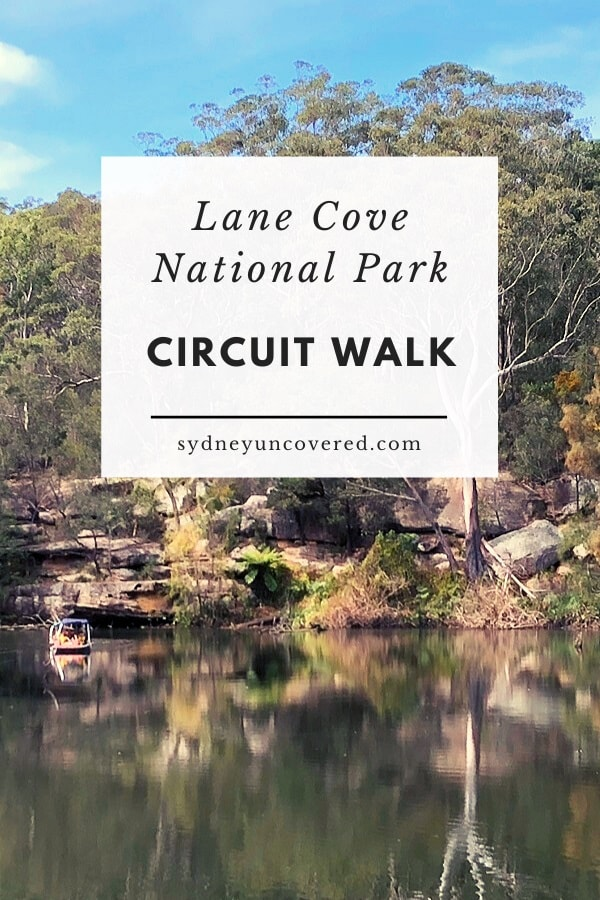 Lane Cove National Park riverside walk