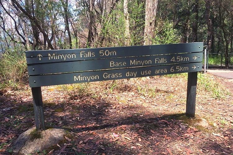 Walking tracks to the base of Minyon Falls