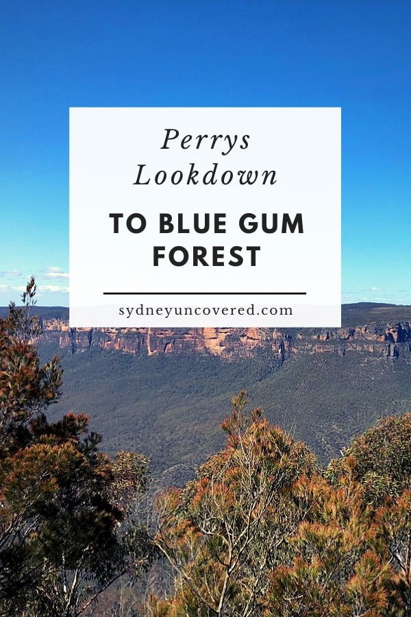 Perrys Lookdown to Blue Gum Forest