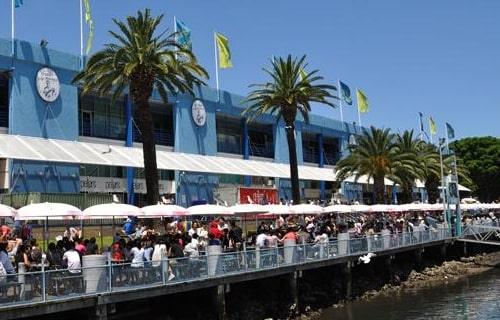 Sydney Fish Market with outdoor seating