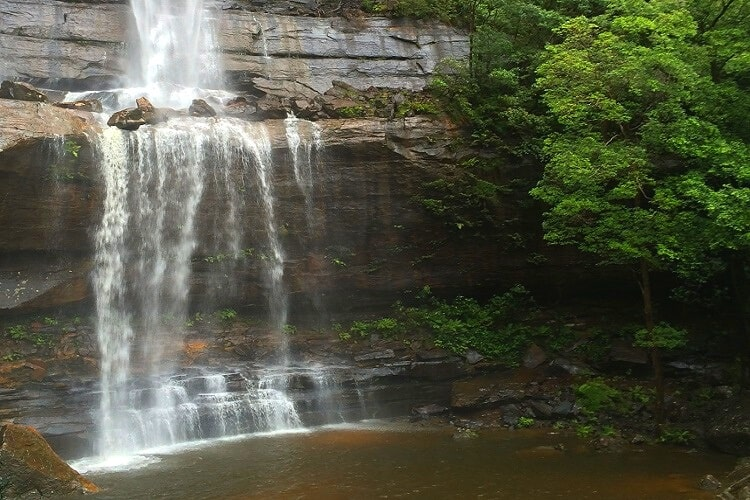 National Pass in Wentworth Falls