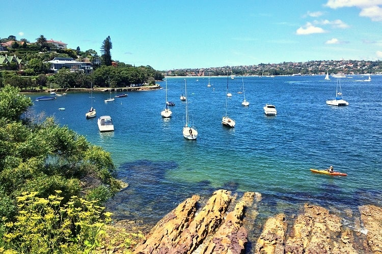 Watsons Bay to Rose Bay
