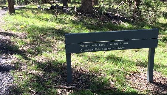 Wollomombi Falls Track sign