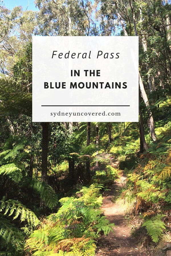 Federal Pass in the Blue Mountains