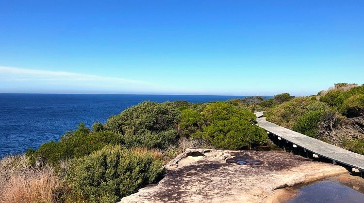 Malabar Headland circuit walk