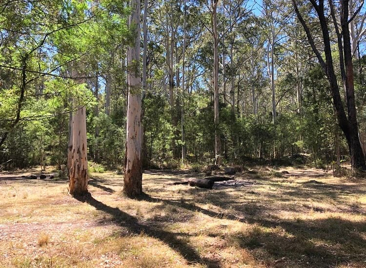 Acacia Flats camping ground