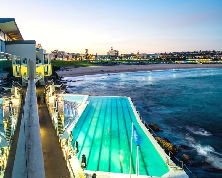 Have an evening drink at Bondi Icebergs
