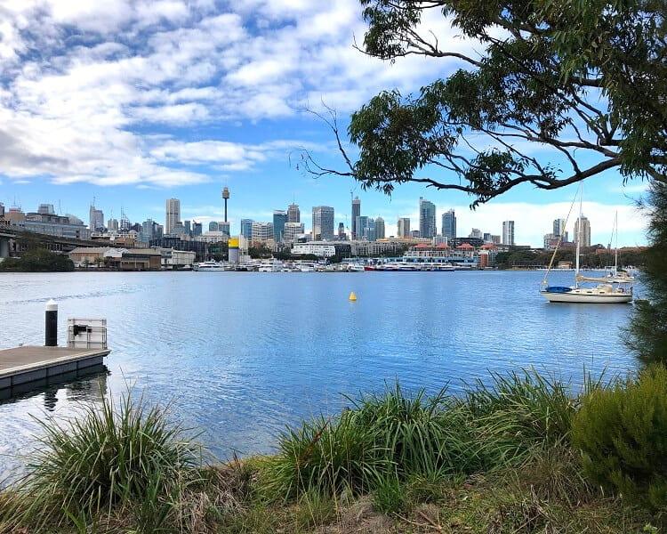 City views from Blackwattle Bay Park
