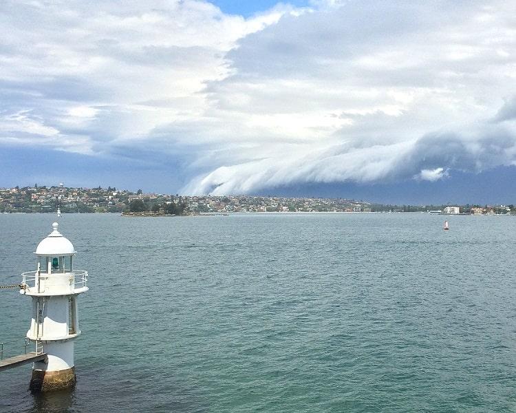 Harbour views from Bradleys Head