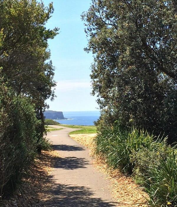 Walking path of the Federation Cliff Walk