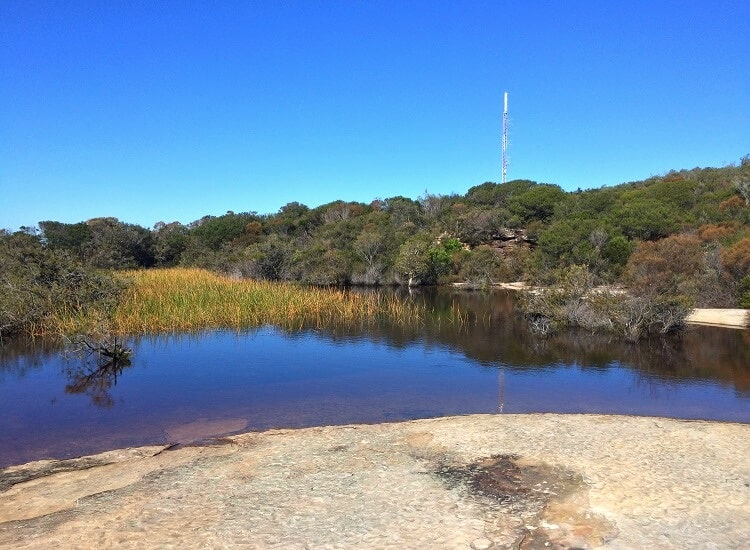 Parkhill Reserve on Manly's North Head