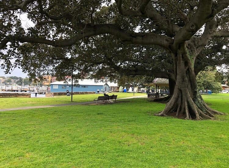 Steyne Park in Double Bay