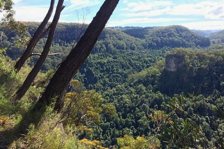 Upper Kangaroo Valley views