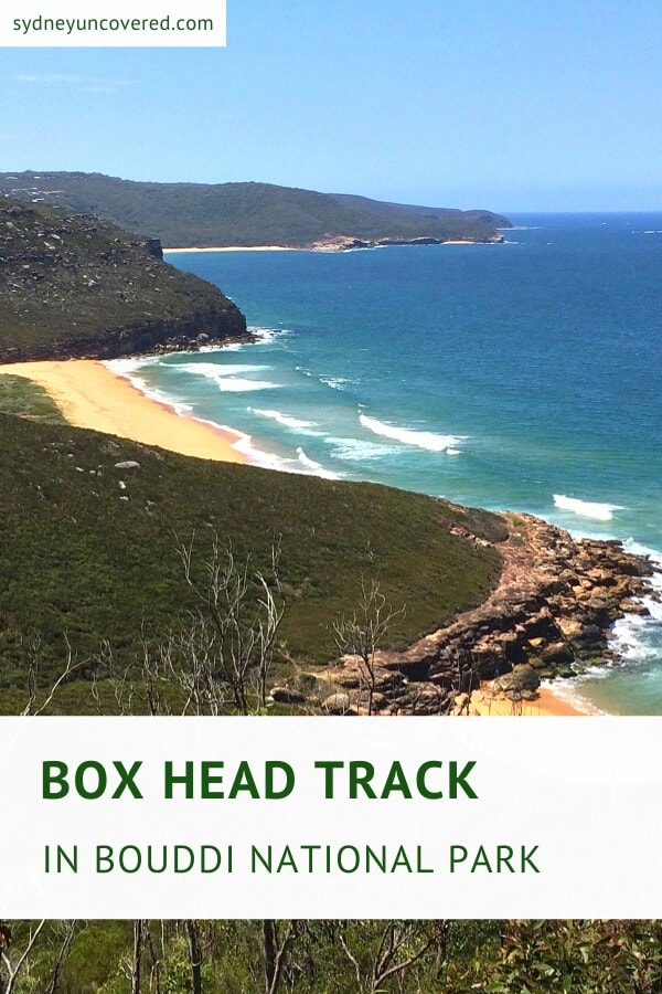 Box Head Track