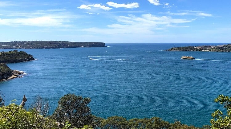 Chowder Bay to Balmoral walk