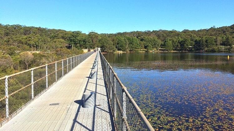 Manly Dam Walk