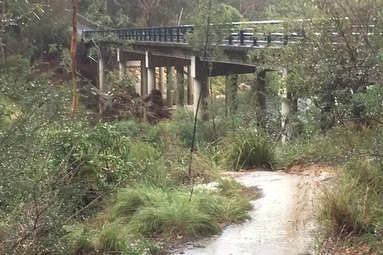 Bridge where the Mermaid Pools walking track starts