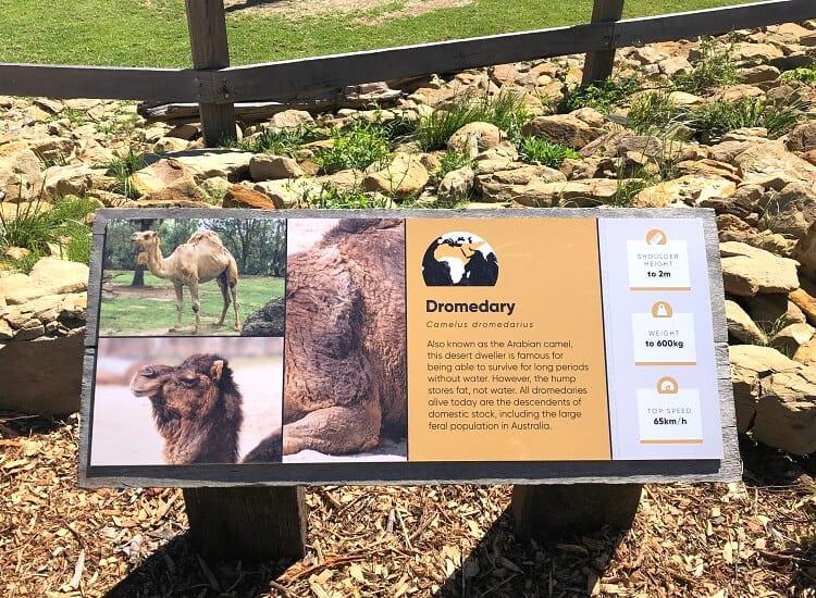 Information board in Sydney Zoo