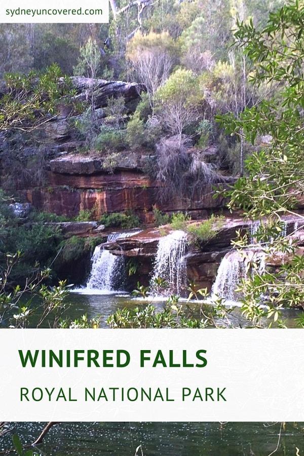 Winifred Falls fire trail