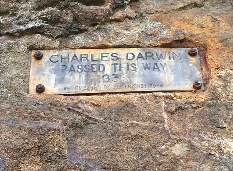 Charles Darwin plaque