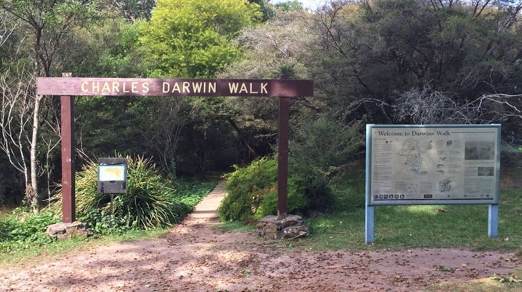 Charles Darwian walk to Wentworth Falls