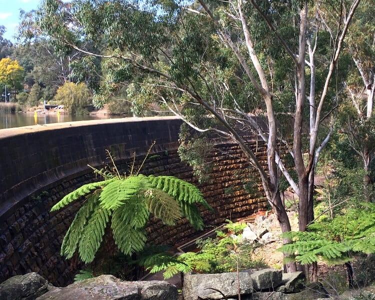 Lake Parramatta Dam