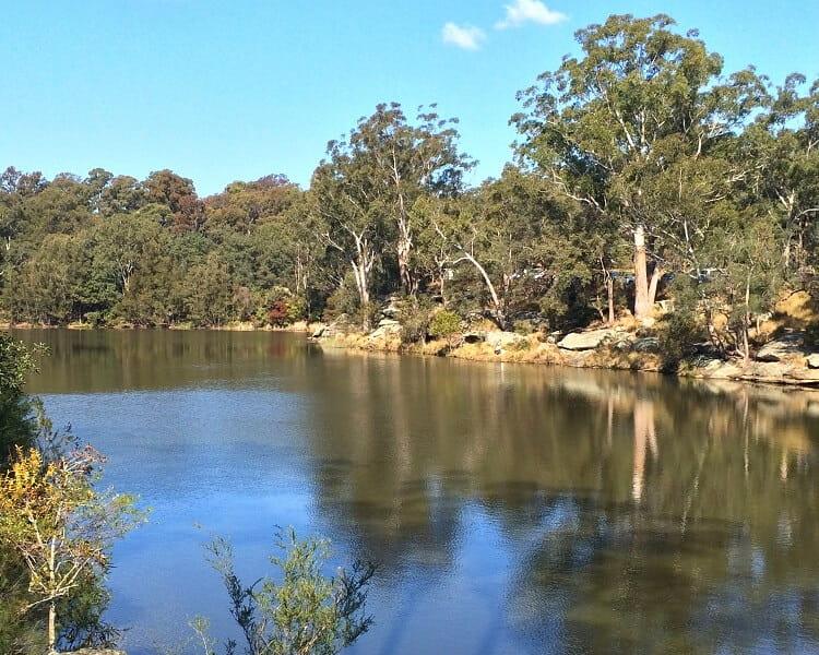 Bushwalking in Lake Parramatta Reserve