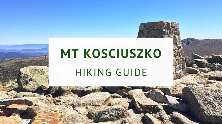 Mount Kosciuszko summit walk (hiking guide)