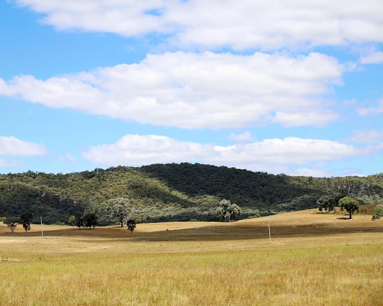 Mudgee in the Central Tablelands