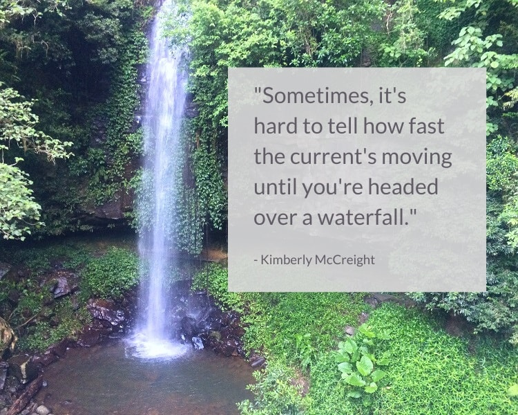 Kimberly McCreight waterfall quote - Sometimes, it's hard to tell how fast the current's moving until you're headed over a waterfall.