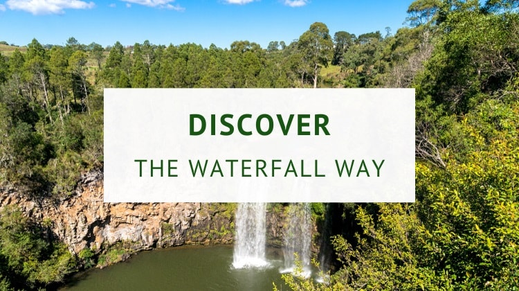 Waterfall Way (highlights and itineraries)