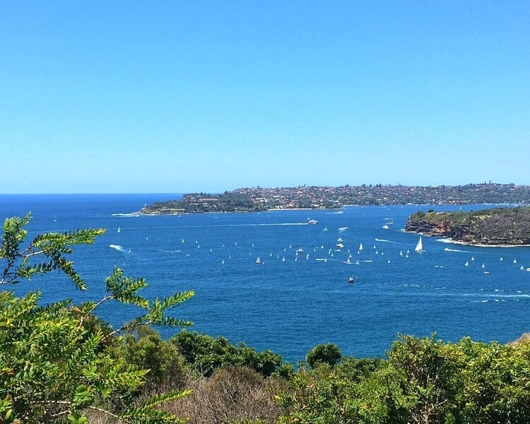 Bondi to Manly Coastal Hike