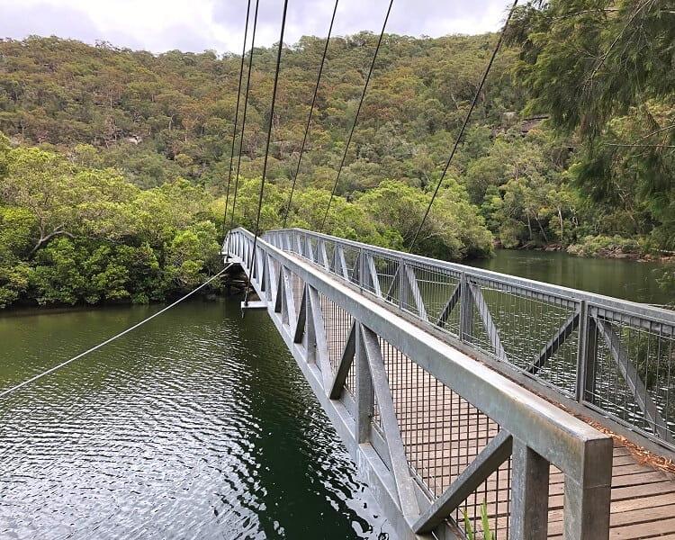 Footbridge over the Bobbin Head mangrove