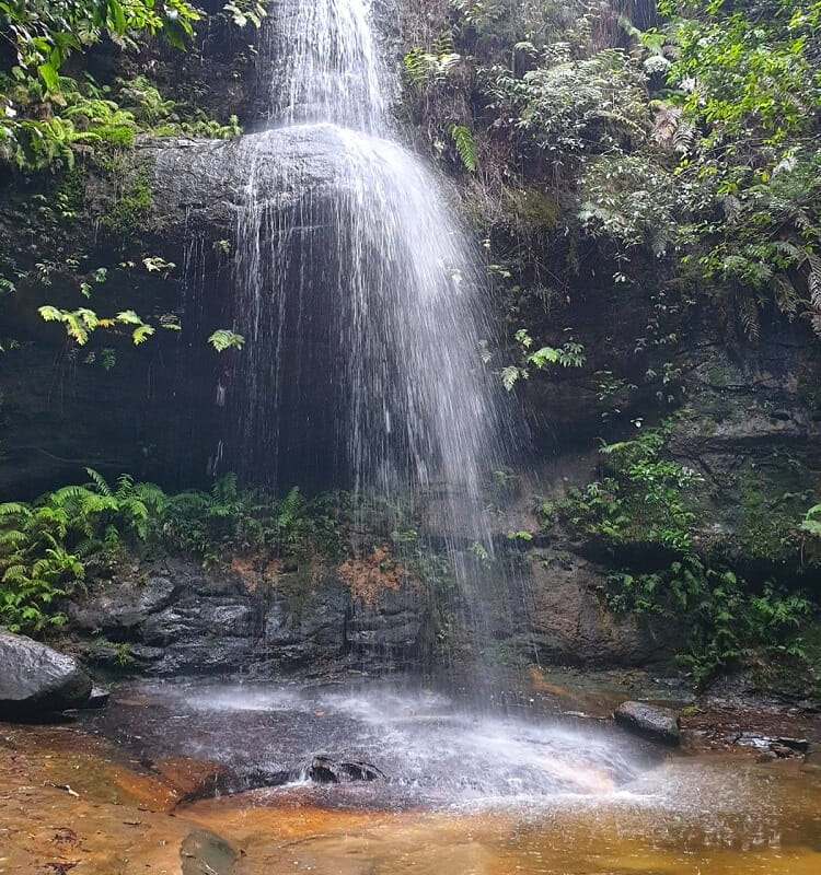 Adelina Falls in South Lawson