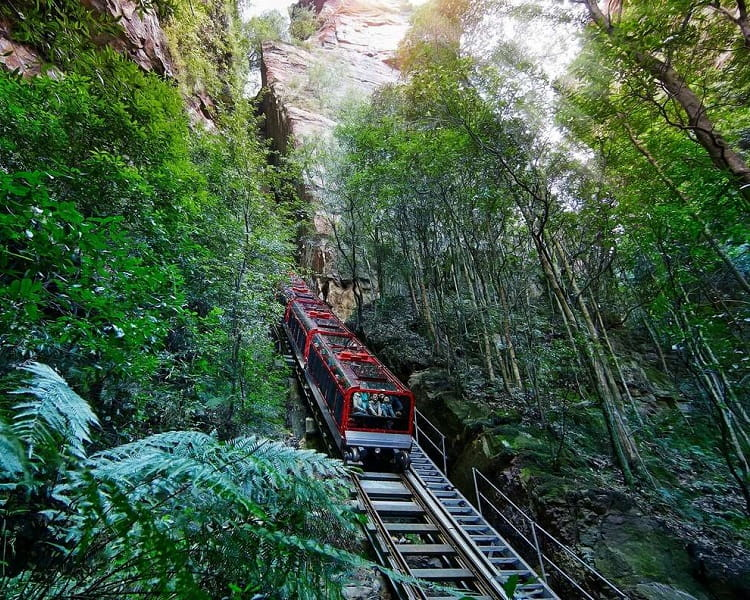 Blue Mountains All Inclusive Tour