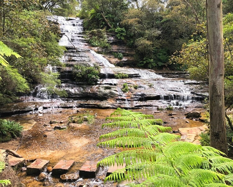 Stepping stones in front of Katoomba Cascades