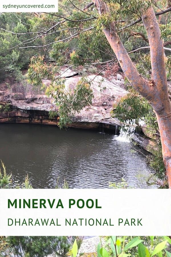 Minerva Pool in Dharawal National Park