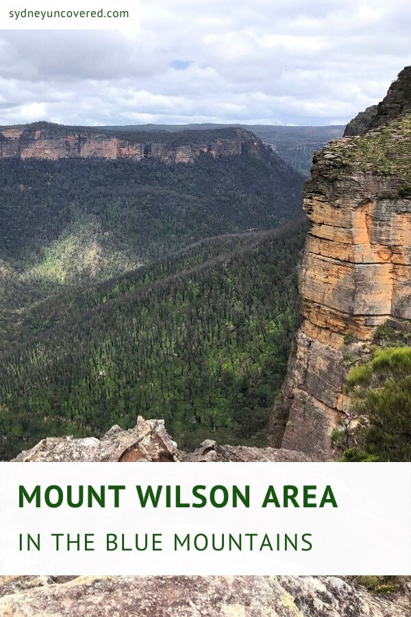 Mount Wilson area of the Blue Mountains