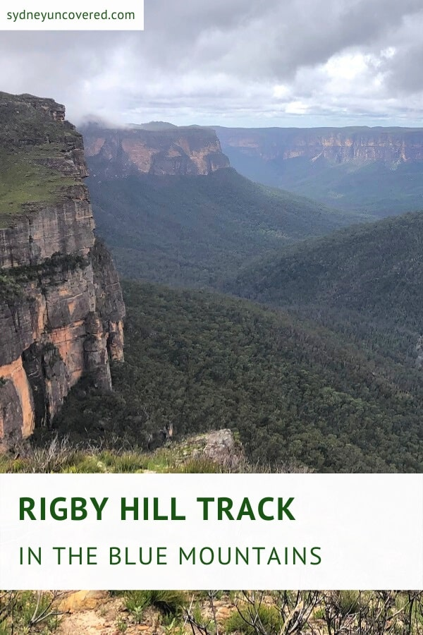 Rigby Hill walking track