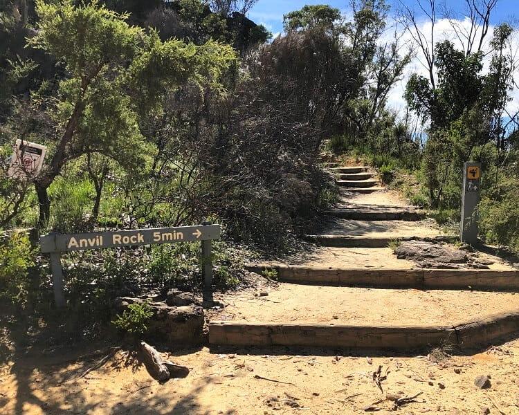 Walking track to Anvil Rock