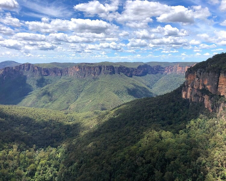 Grose Valley views from Govetts Leap Lookout