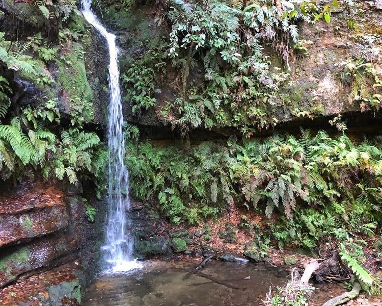 Linda Falls