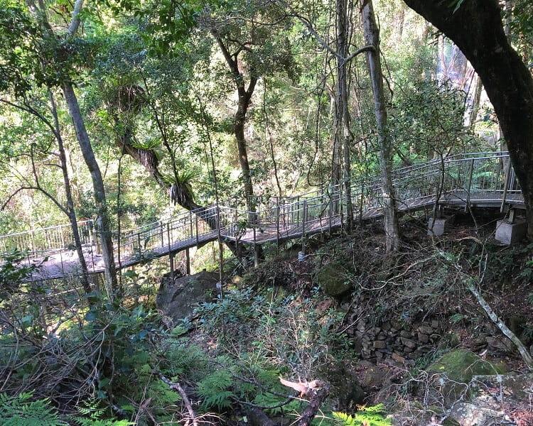 Viewing platform for lower Minnamurra Falls