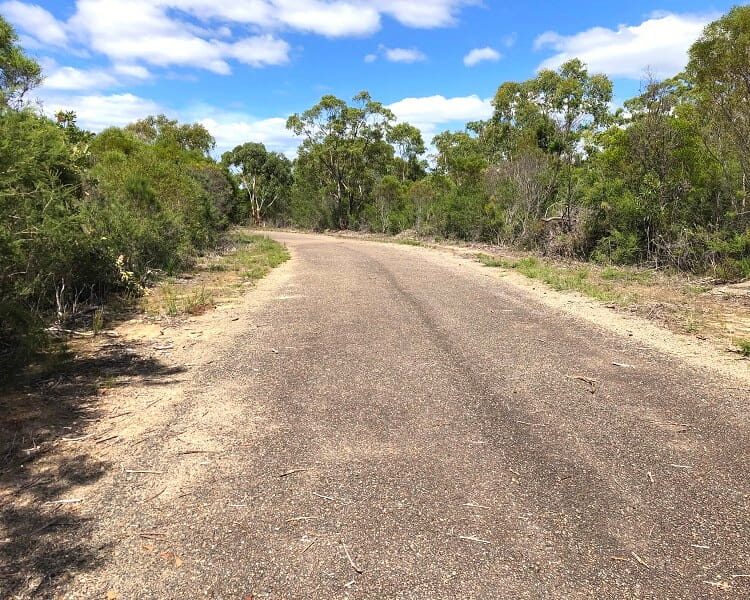 Road to the O'Hares Creek Lookout