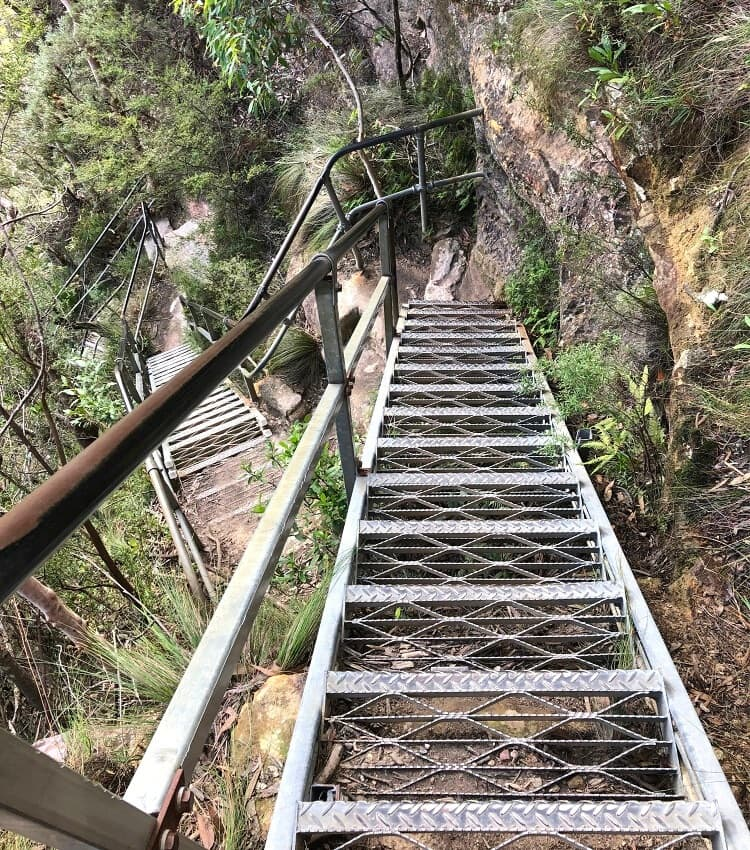Steel staircases along the Empress Falls walking track